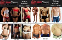 menwomen fat%
