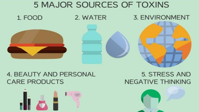 why-you-should-cleanse-and-detox-your-body-featured-image